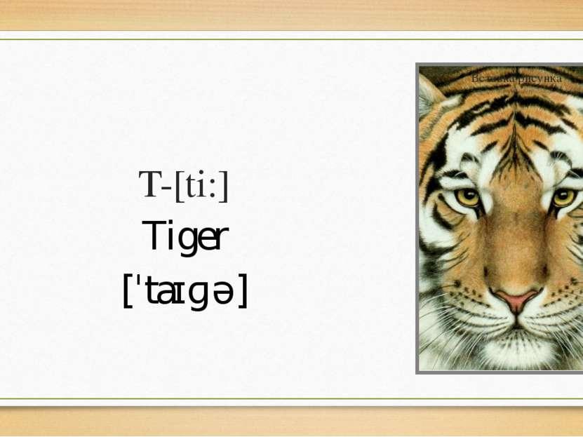 T-[ti:] Tiger [ˈtaɪɡə]