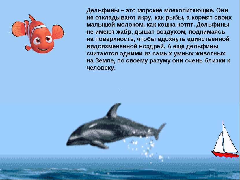 Дельфины – это морские млекопитающие. Они не откладывают икру, как рыбы, а ко...