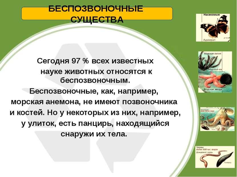 Сегодня 97 % всех известных науке животных относятся к беспозвоночным. Беспоз...