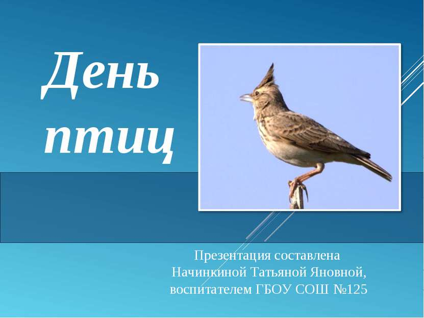 День птиц Презентация составлена Начинкиной Татьяной Яновной, воспитателем ГБ...