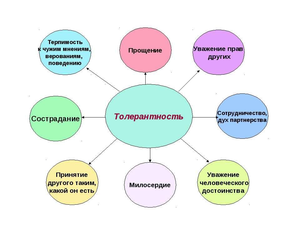 Толерантность Прощение Уважение прав других Сотрудничество, дух партнерства У...