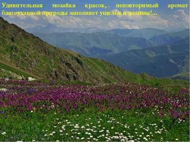 Удивительная мозайка красок, неповторимый аромат благоуханной природы заполня...