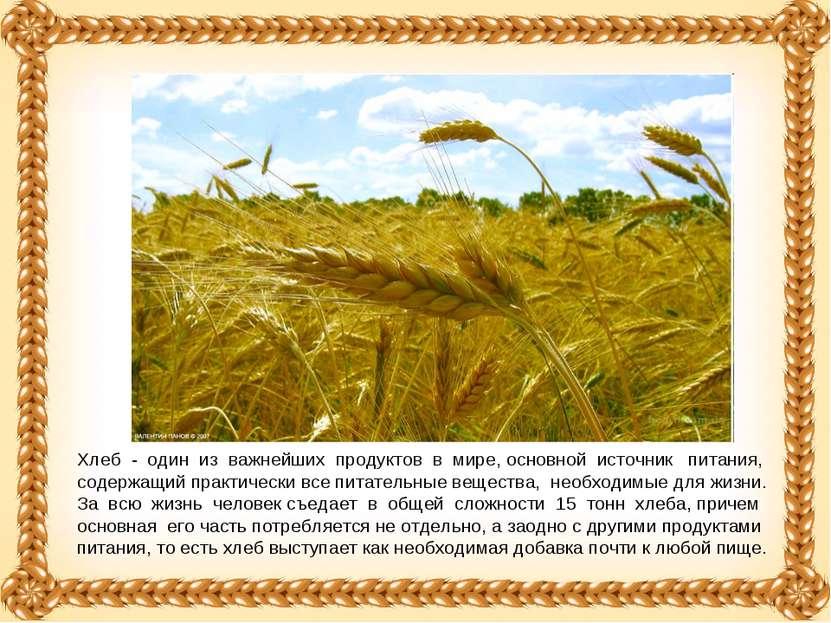 Хлеб - один из важнейших продуктов в мире, основной источник питания, содержа...
