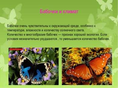 Бабочки очень чувствительны к окружающей среде, особенно к температуре, влажн...