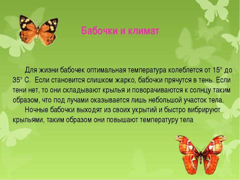 Для жизни бабочек оптимальная температура колеблется от 15° до 35° С. Если ст...
