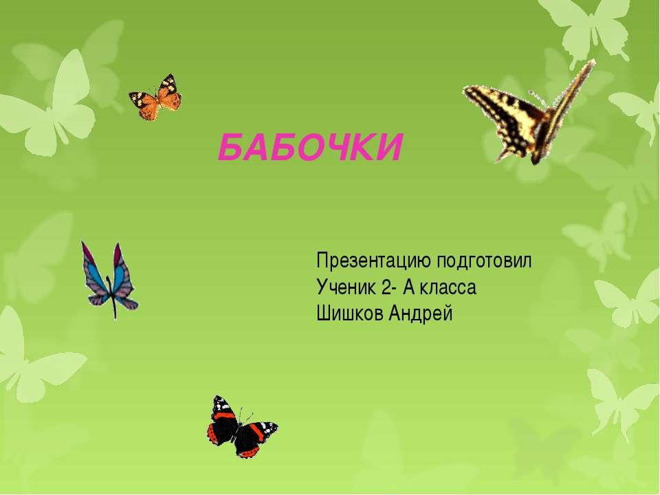 БАБОЧКИ Презентацию подготовил Ученик 2- А класса Шишков Андрей