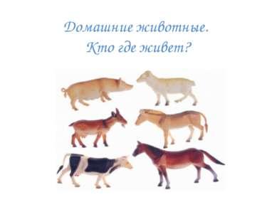 Домашние животные. Кто где живет?
