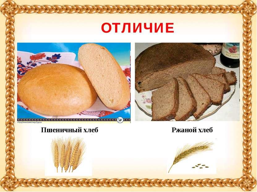 Пшеничный хлеб Ржаной хлеб ОТЛИЧИЕ