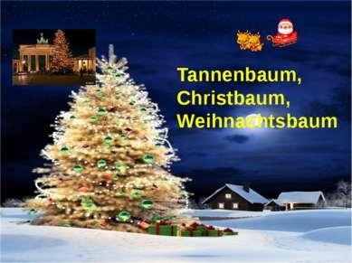 Tannenbaum, Christbaum, Weihnachtsbaum