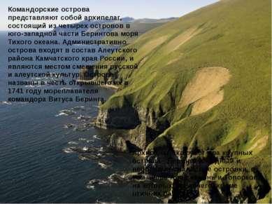 Архипелаг включает два крупных острова - Беринга и Медный и небольшие скалист...