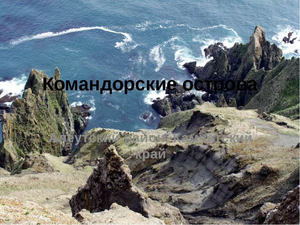 Командорские острова Алеутский район, Камчатский край