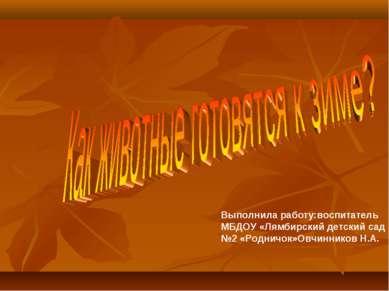 Выполнила работу:воспитатель МБДОУ «Лямбирский детский сад №2 «Родничок»Овчин...