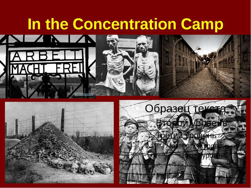 In the Concentration Camp