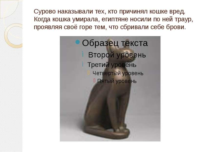 Сурово наказывали тех, кто причинял кошке вред. Когда кошка умирала, египтяне...