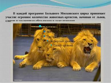 В каждой программе Большого Московского цирка принимает участие огромное коли...