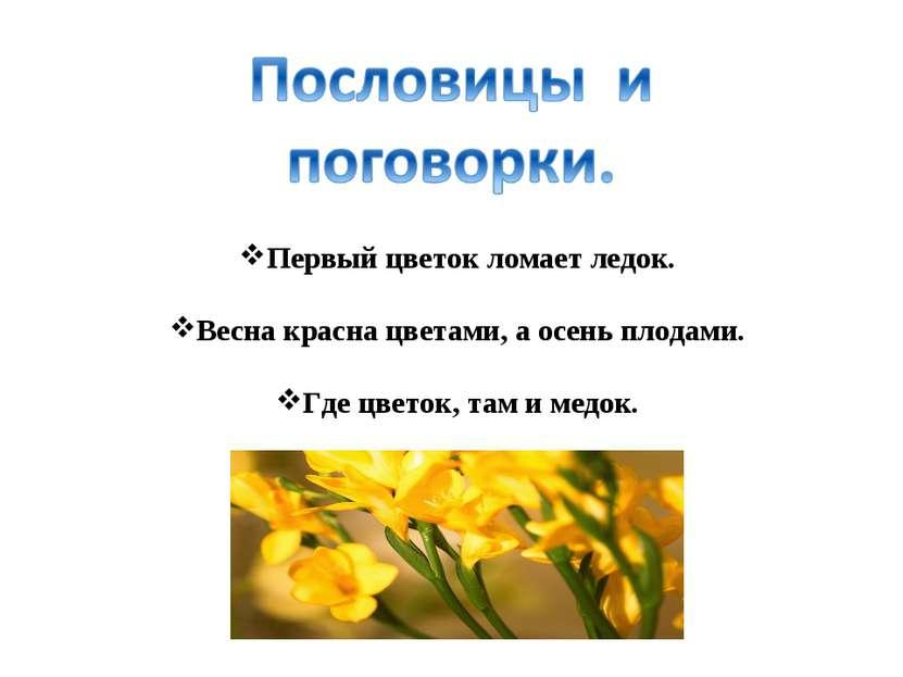 Первый цветок ломает ледок. Весна красна цветами, а осень плодами. Где цветок...