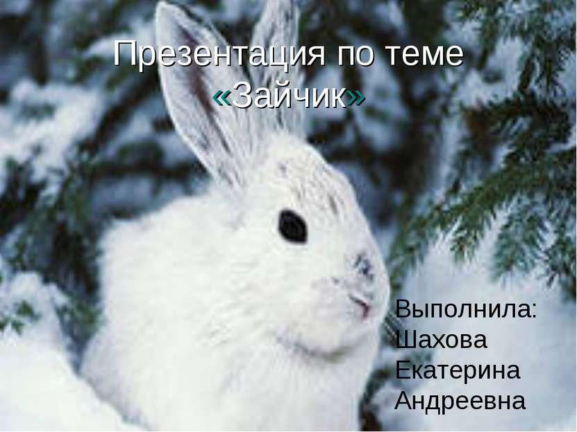 Презентация по теме «Зайчик» Выполнила:Шахова Екатерина Андреевна