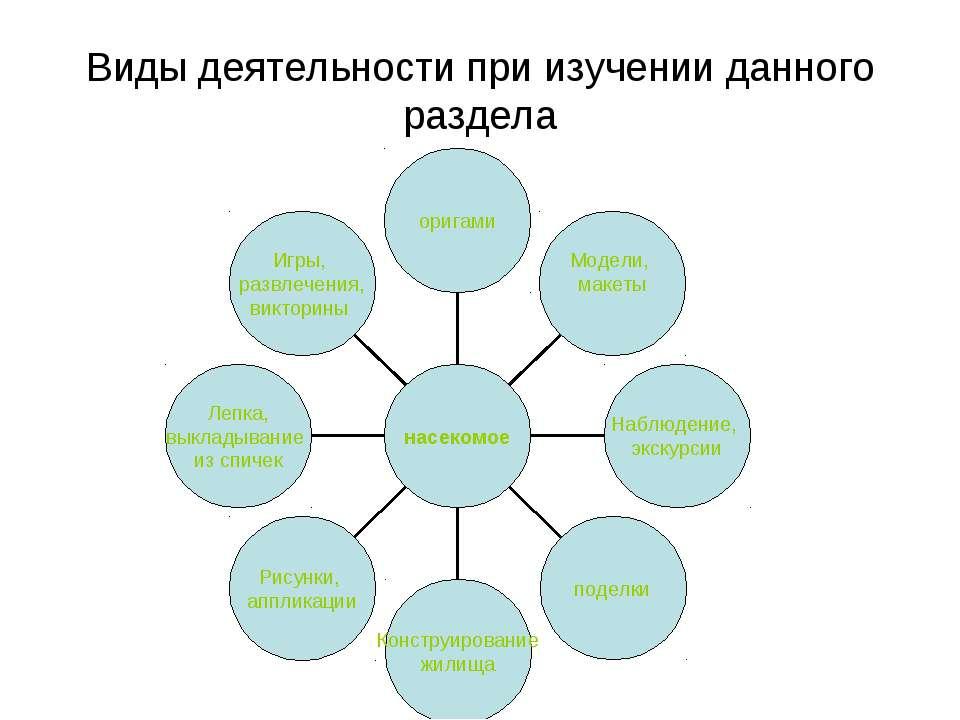 Виды деятельности при изучении данного раздела