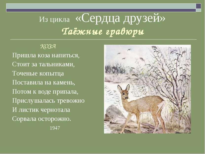 Из цикла «Сердца друзей» Таёжные гравюры КОЗА Пришла коза напиться, Стоит за ...