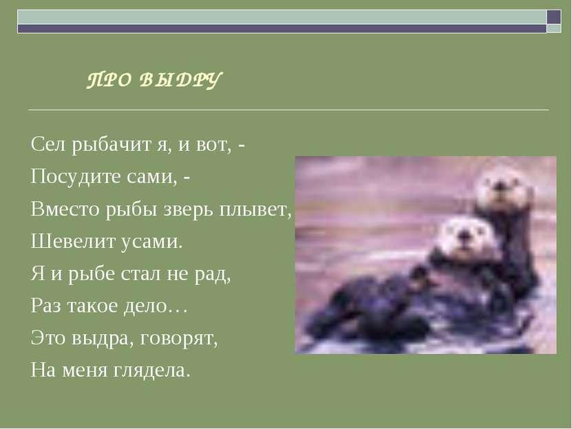 ПРО ВЫДРУ Сел рыбачит я, и вот, - Посудите сами, - Вместо рыбы зверь плывет, ...