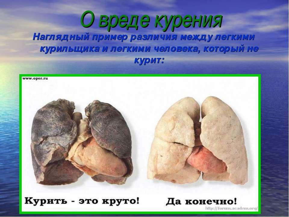 О вреде курения Наглядный пример различия между легкими курильщика и легкими ...
