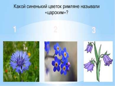 Какой синенький цветок римляне называли «царским»? 1 2 3
