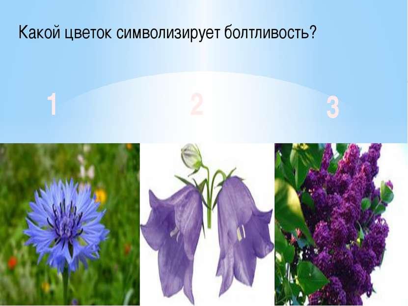Какой цветок символизирует болтливость? 1 2 3
