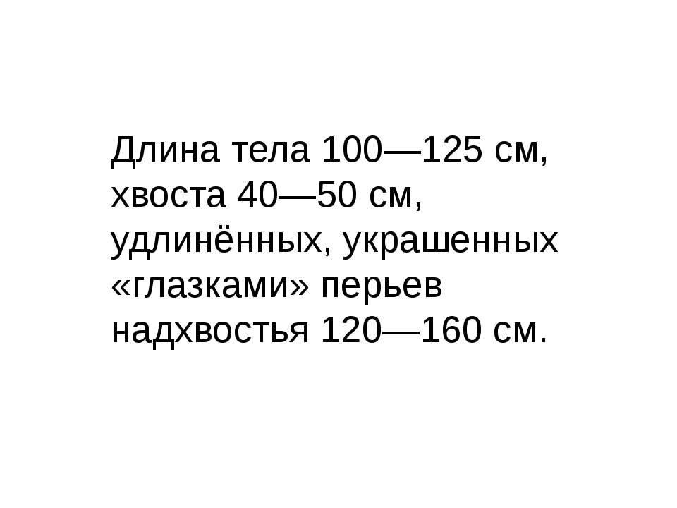 Длина тела 100—125 см, хвоста 40—50 см, удлинённых, украшенных «глазками» пер...