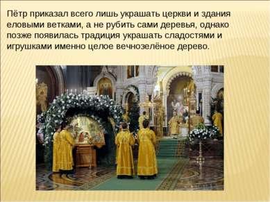 Пётр приказал всего лишь украшать церкви и здания еловыми ветками, а не рубит...