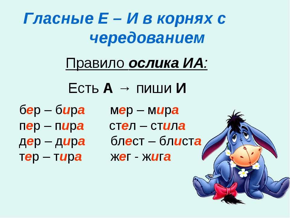 Гласные Е – И в корнях с чередованием Правило ослика ИА: Есть А → пиши И бер ...