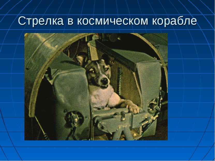 Стрелка в космическом корабле