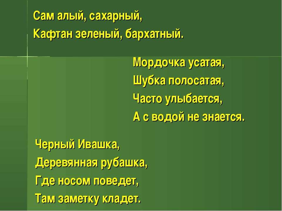 Сам алый, сахарный, Кафтан зеленый, бархатный. Мордочка усатая, Шубка полосат...