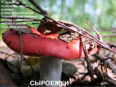 Л. Чефанова На полянке, вдоль дорожки Всюду встретится она, Сыроежка-гриб хор...