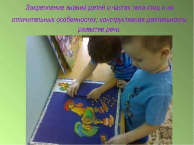Закрепление знаний детей о частях тела птиц и их отличительных особенностях; ...