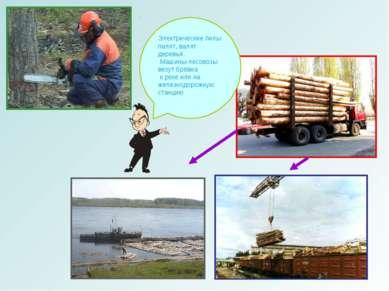 Электрические пилы пилят, валят деревья. Машины-лесовозы везут брёвна к реке ...