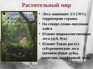 Растительный мир Леса занимают 2/3 (70%) территории страны. На севере елово–п...