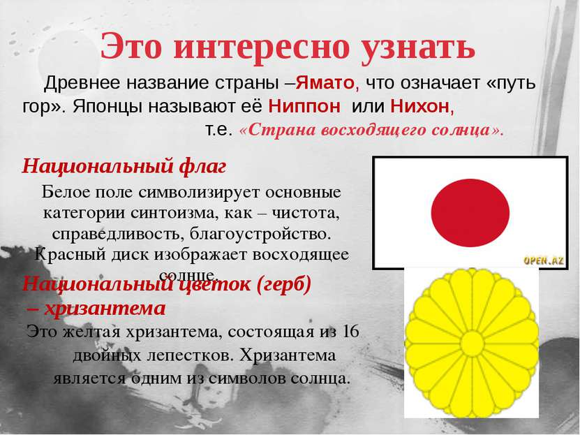 Это интересно узнать Это желтая хризантема, состоящая из 16 двойных лепестков...