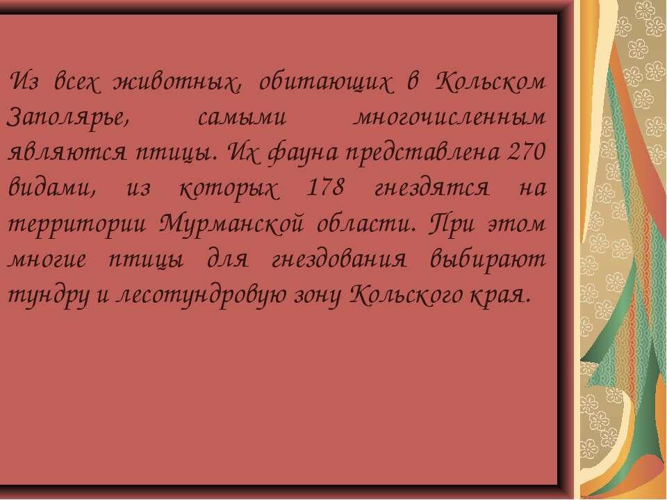 Из всех животных, обитающих в Кольском Заполярье, самыми многочисленным являю...