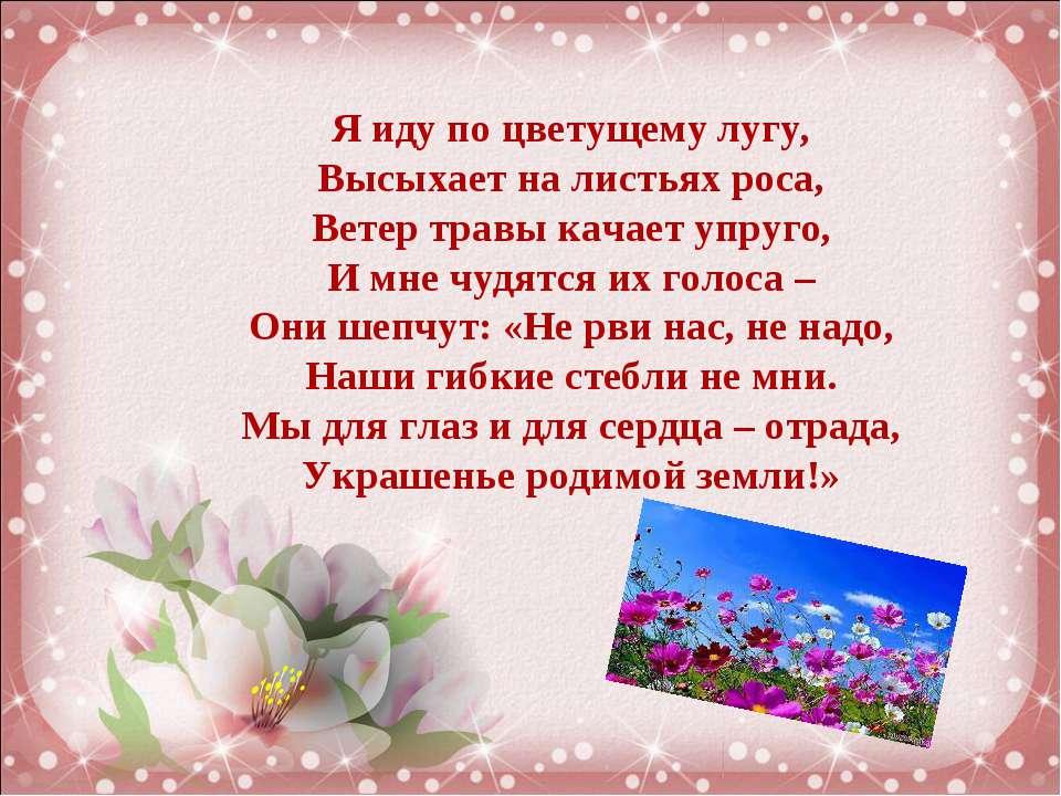 Я иду по цветущему лугу, Высыхает на листьях роса, Ветер травы качает упруго,...