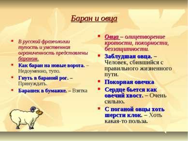 Баран и овца В русской фразеологии тупость и умственная ограниченность предст...