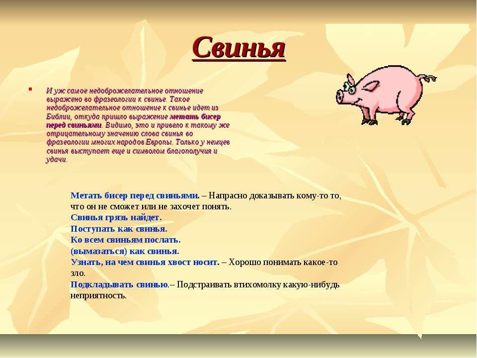 Свинья И уж самое недоброжелательное отношение выражено во фразеологии к свин...