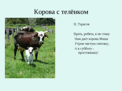 Корова с телёнком Н. Тарасов Врать, ребята, я не стану Нам дает корова Маша У...