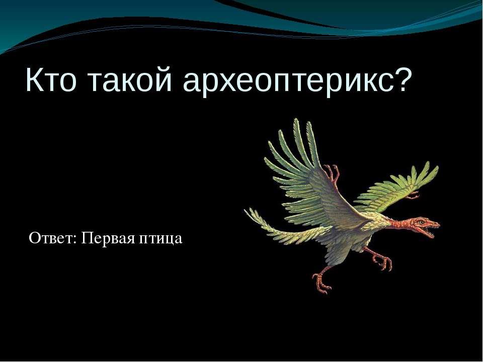 Кто такой археоптерикс? Ответ: Первая птица