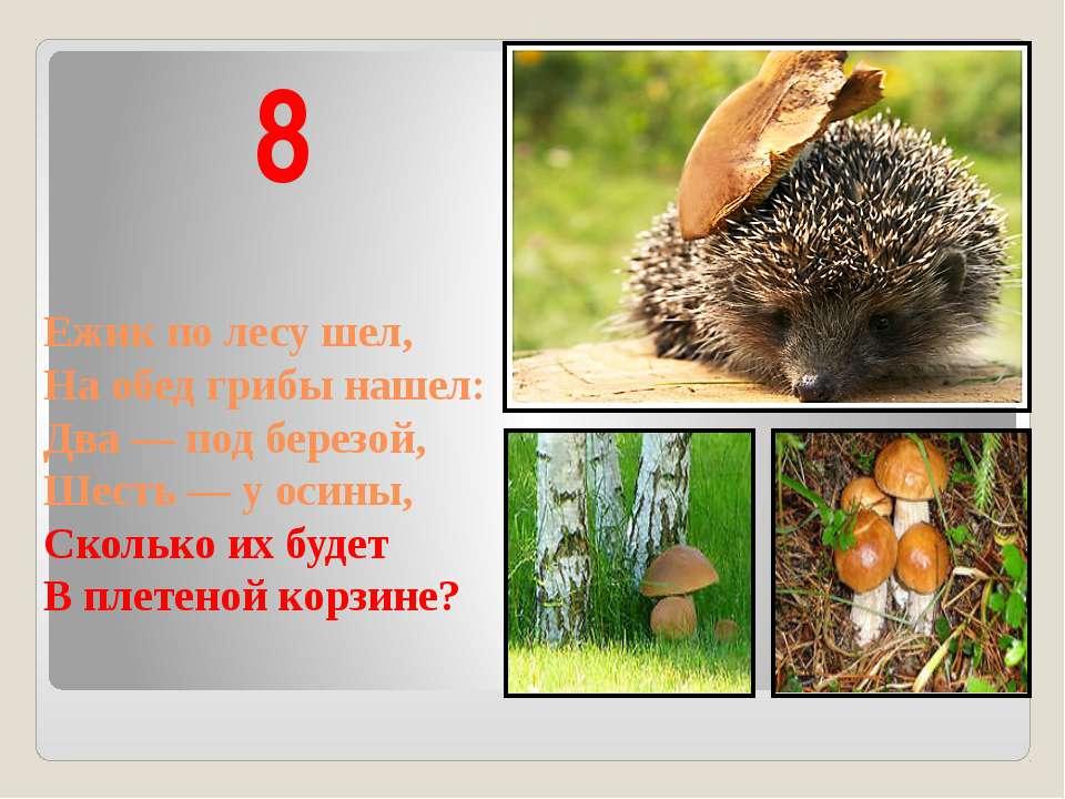 Ежик по лесу шел, На обед грибы нашел: Два — под березой, Шесть — у осины, Ск...