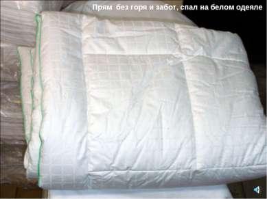 Прям без горя и забот, спал на белом одеяле