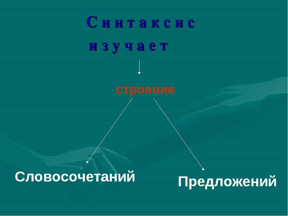 С и н т а к с и с и з у ч а е т Предложений Словосочетаний строение