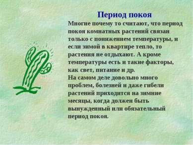 Период покоя Многие почему то считают, что период покоя комнатных растений св...