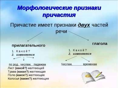 Морфологические признаки причастия Причастие имеет признаки двух частей речи ...