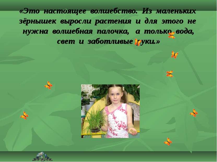 «Это настоящее волшебство. Из маленьких зёрнышек выросли растения и для этого...