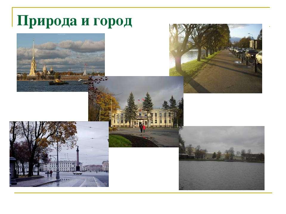 Природа и город